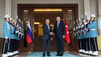 Cumhurbaşkanı Erdoğan, Rusya Devlet Başkanı Putin ile bir araya geldi