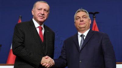 """Cumhurbaşkanı Erdoğan,""""Ortak tarihî ve kültürel mirasımızın korunması noktasında Macaristan ile örnek bir iş birliğimiz mevcut"""""""